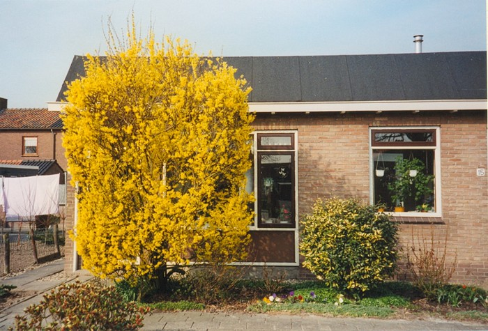 piershil-prins-bernhardstraat-huizevdhoeven-01