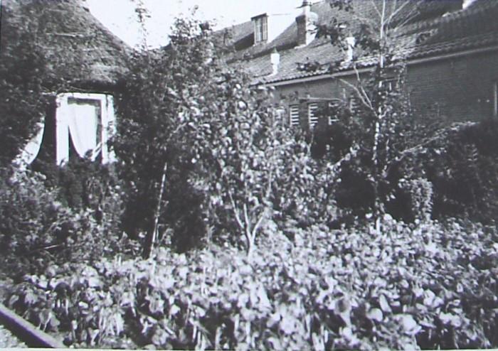 piershil-school-molendijk-schoolplein-zomer1951