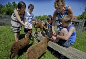 foto-spar-kinderboerderij-2juli2015